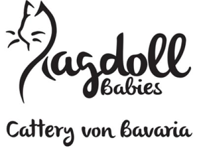 RagdollBabies-Logobanner